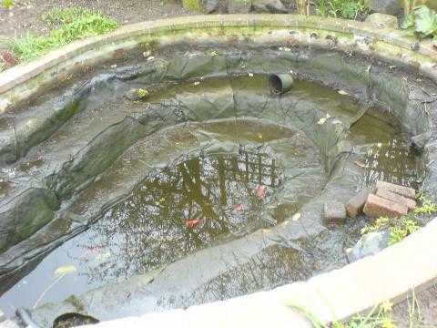 Nitraat vijver verwijderen